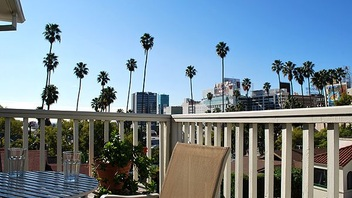 Cap Rec Balcony palm view